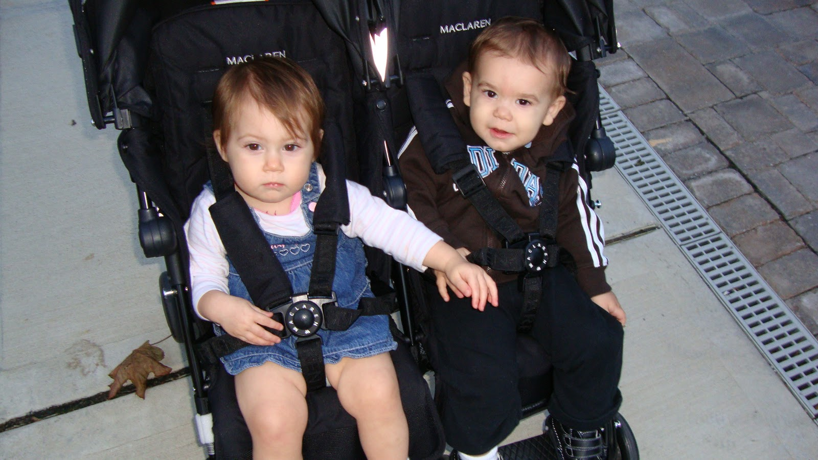 The Maclaren Twin Techno Double Stroller 187 Penelopes Oasis
