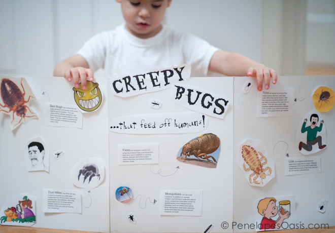 creepy bugs project