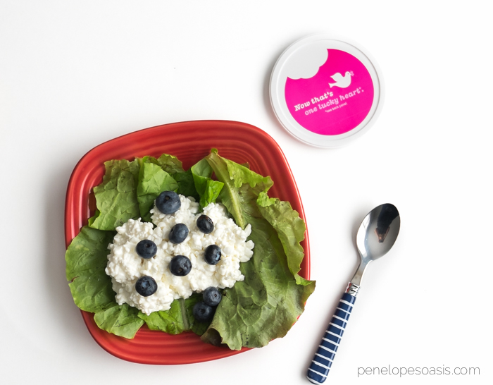 cottage cheese blueberry superfood lettuce wraps