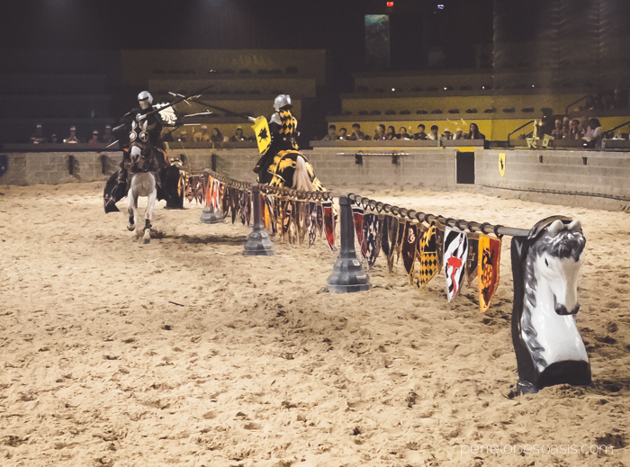 medieval times myrtle beach-7
