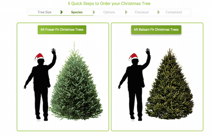 Christmas Trees And Wreaths Delivered To Your Door