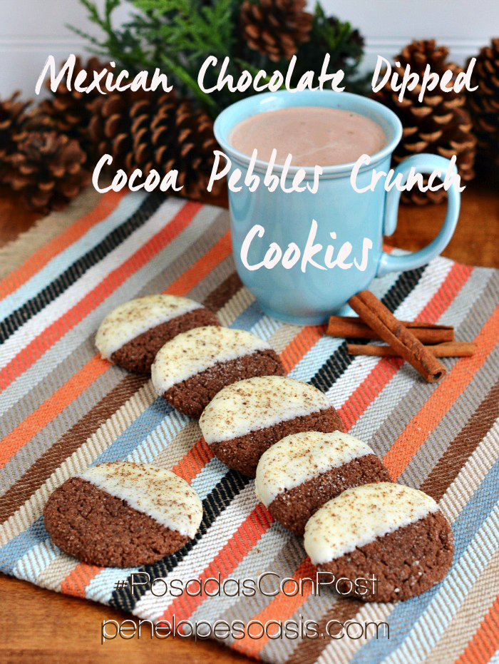 White Chocolate Dipped Mexican Chocolate Cookies