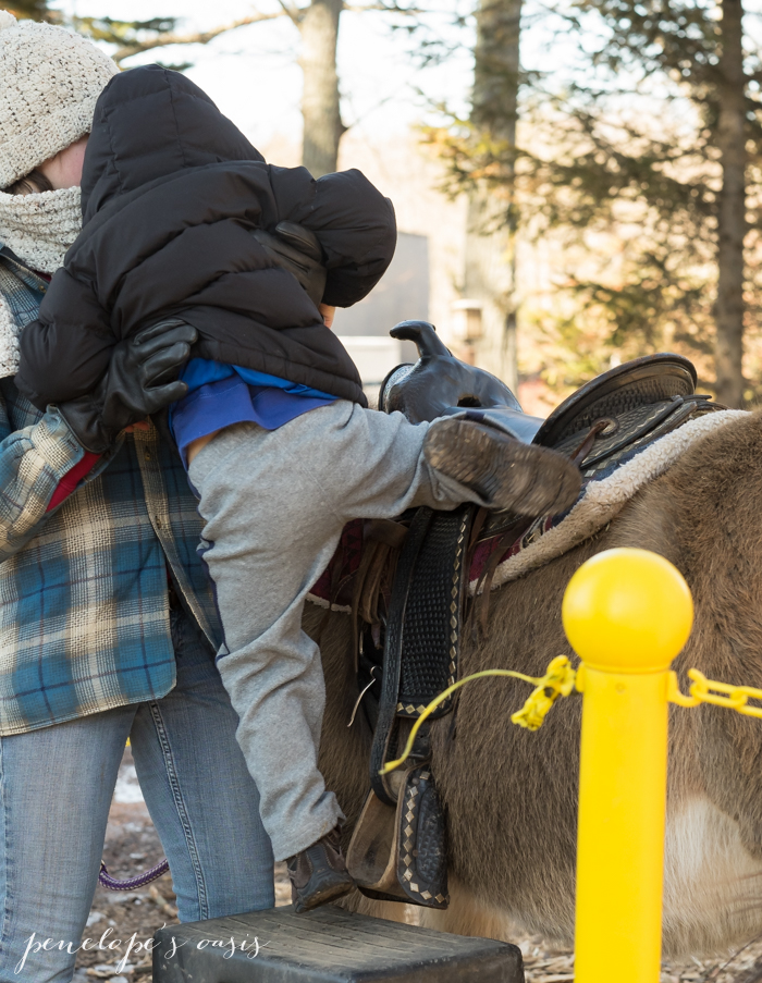 pony rides-2