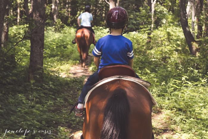 New Hampshire Horseback Riding