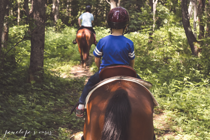 New Hampshire Horseback Riding Kids