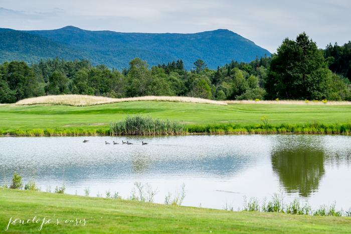 New Hampshire Landscapes Penelope Guzman