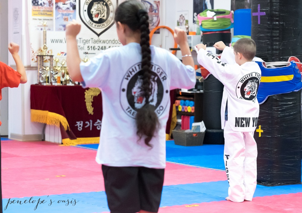 Tae Kwon Do new hyde park