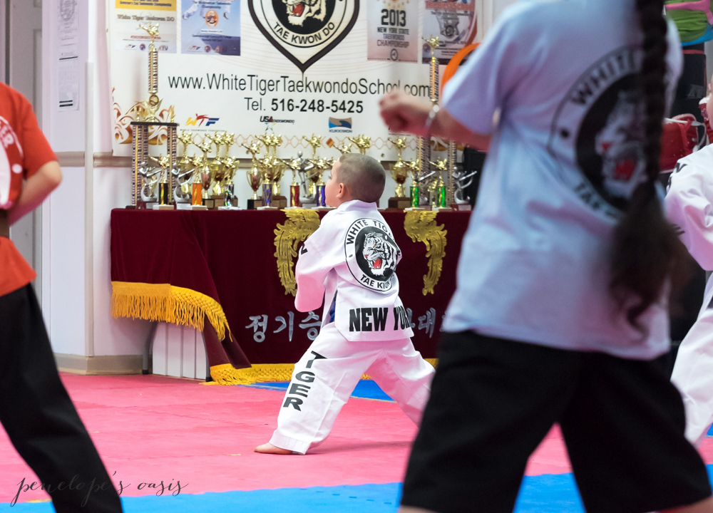 Tae Kwon Do long island new york