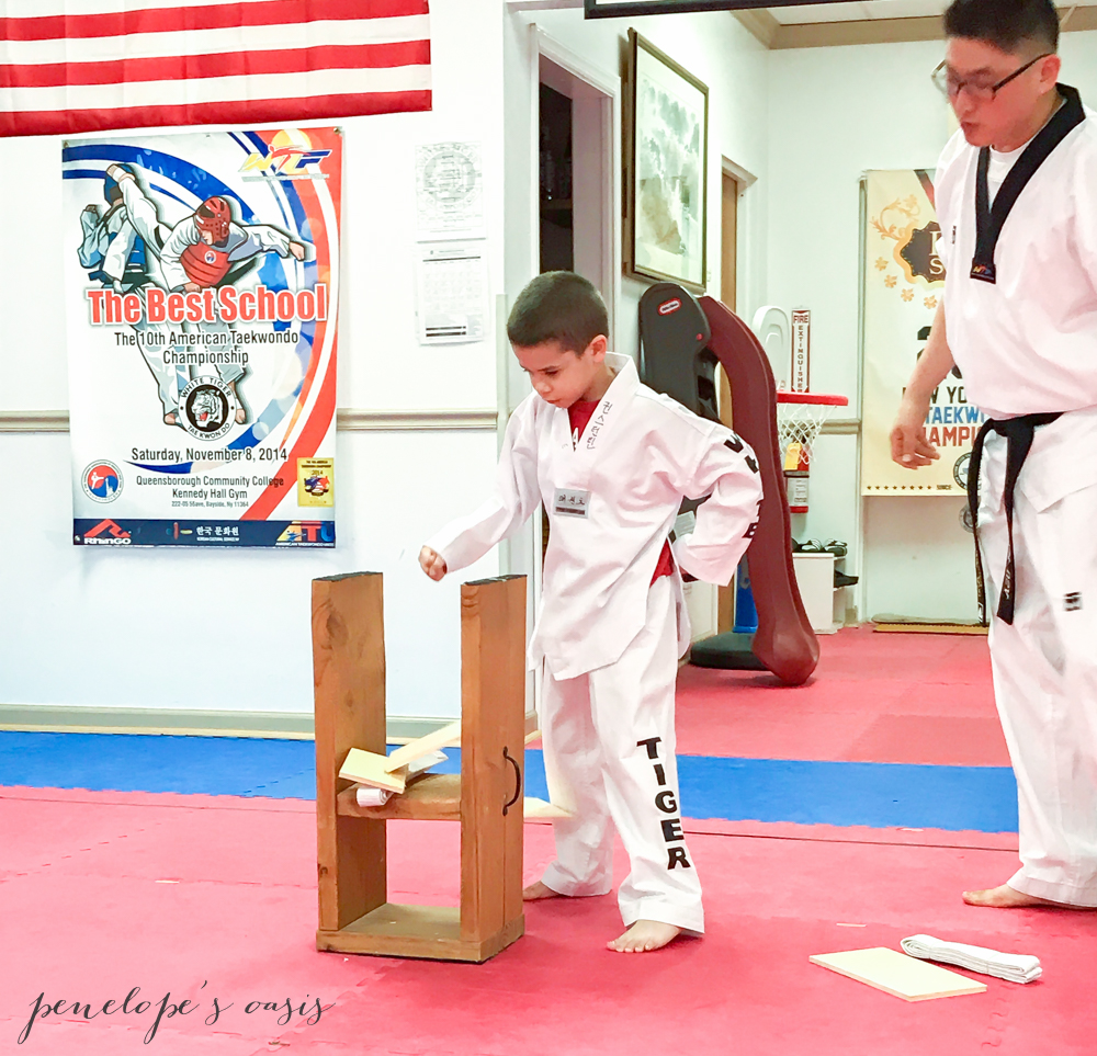 Tae Kwon Do lessons