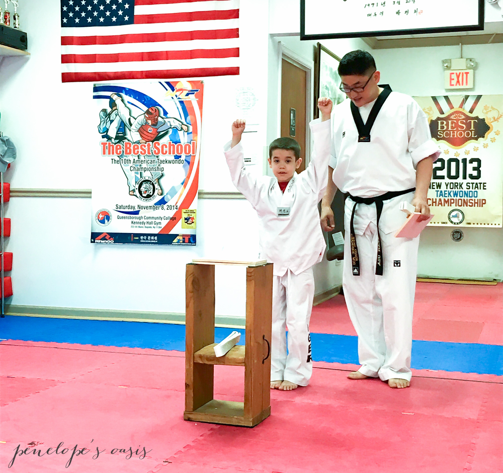 Tae Kwon Do raising boys
