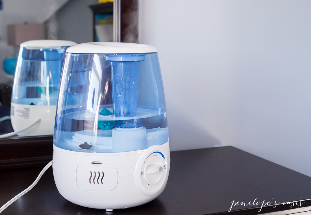 Cold and flu season survival guide a giveaway for Humidifier cleaning fish